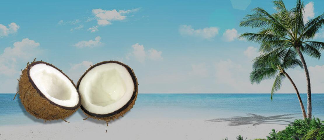जानिए इस तरह से हुआ था नारियल का जन्म इस पोराणिक कथा के द्वारा